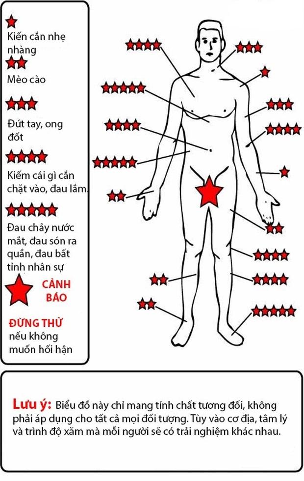 Các vùng nhạy cảm - biểu thị mức độ, cảm giác khi xăm hình