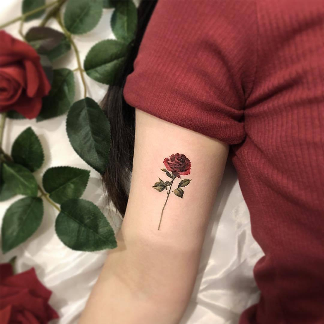 hoa hồng mini trên bắp tay